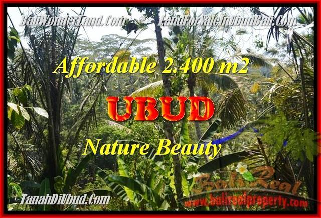 Exotic PROPERTY 2400 m2 LAND SALE IN Ubud Pejeng BALI TJUB454