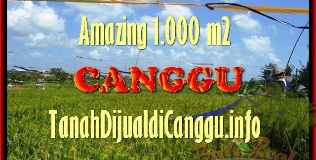 Beautiful PROPERTY LAND IN Canggu Kayutulang BALI FOR SALE TJCG154