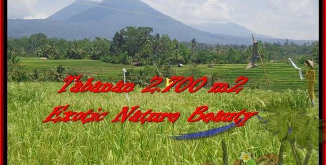 Beautiful LAND SALE IN Tabanan Penebel BALI TJTB175