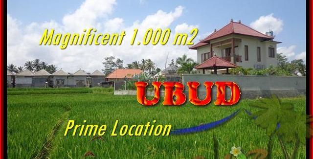Beautiful 1.000 m2 LAND SALE IN UBUD TJUB445