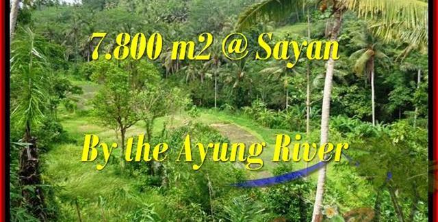 FOR SALE Magnificent PROPERTY LAND IN Near Ubud Center BALI TJUB472