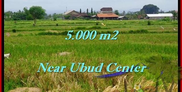 Affordable PROPERTY Ubud Center BALI LAND FOR SALE TJUB474