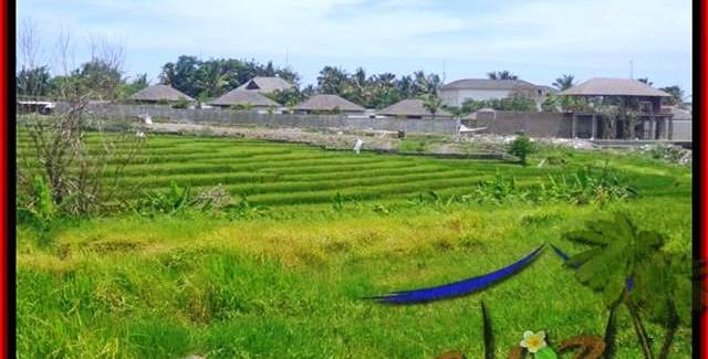 Beautiful Canggu Cemagi BALI LAND FOR SALE TJCG137