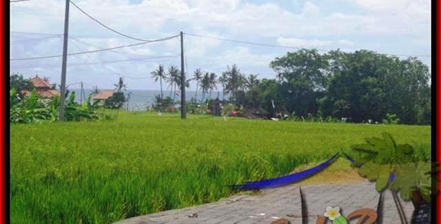 Beautiful LAND IN Canggu Cemagi FOR SALE TJCG138