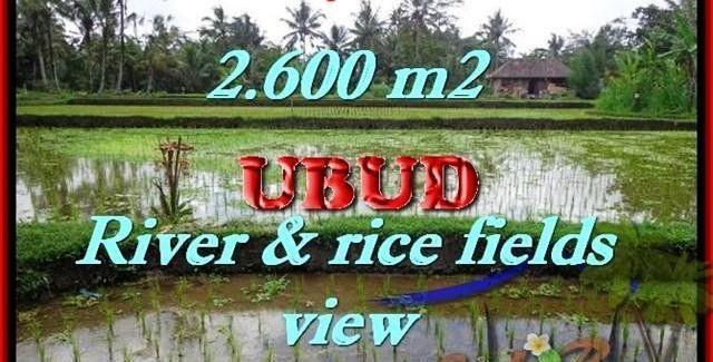 Magnificent Ubud Tegalalang BALI LAND FOR SALE TJUB421