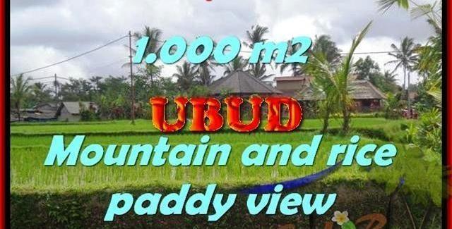 Affordable LAND FOR SALE IN Ubud Tegalalang BALI TJUB424
