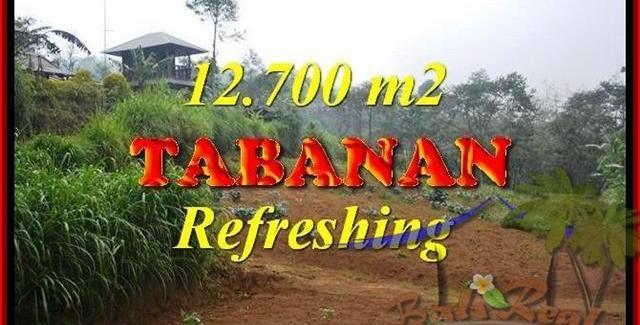 FOR SALE Affordable 12,700 m2 LAND IN TABANAN TJTB167