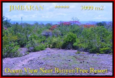 Magnificent PROPERTY JIMBARAN 3.000 m2 LAND FOR SALE TJJI090