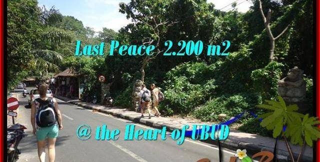 FOR SALE Exotic PROPERTY 2,200 m2 LAND IN UBUD BALI TJUB509