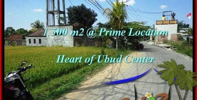 Affordable PROPERTY 1,500 m2 LAND SALE IN UBUD BALI TJUB508