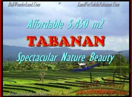 5.450 m2 LAND SALE IN TABANAN TJTB152