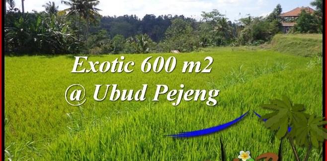 Affordable Ubud Tampak Siring BALI LAND FOR SALE TJUB513