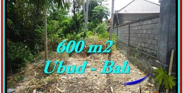 FOR SALE Affordable PROPERTY 600 m2 LAND IN UBUD BALI TJUB523