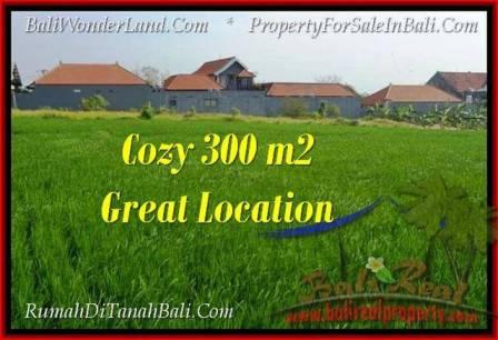 Beautiful PROPERTY Canggu Brawa BALI LAND FOR SALE TJCG186