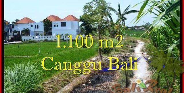 LAND FOR SALE IN Canggu Brawa TJCG193
