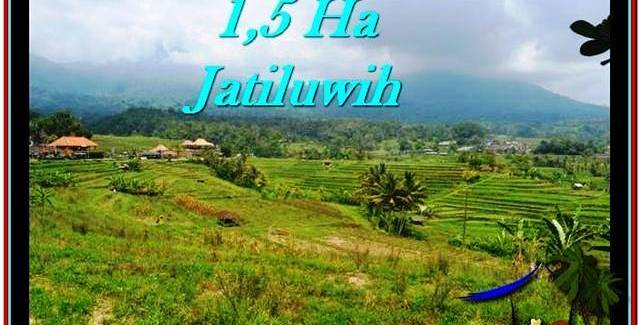 Affordable Tabanan Penebel BALI LAND FOR SALE TJTB225