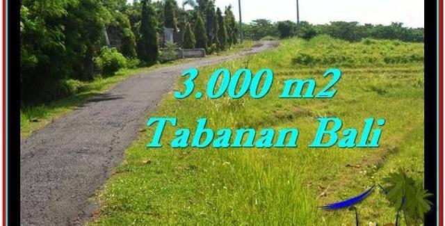 Beautiful PROPERTY 3,000 m2 LAND IN Tabanan Selemadeg FOR SALE TJTB246