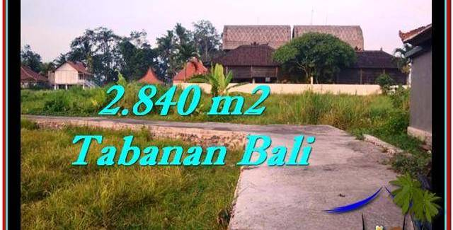 FOR SALE Magnificent LAND IN Tabanan Tanah Lot BALI TJTB247