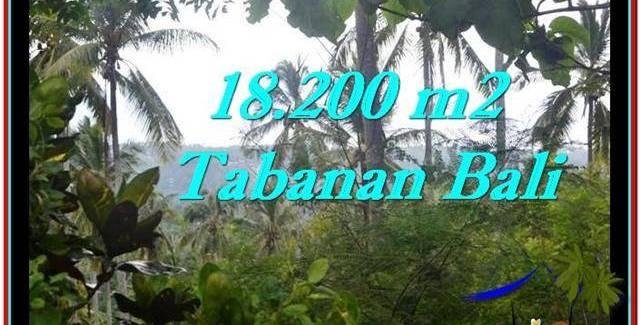 FOR SALE 18,200 m2 LAND IN TABANAN TJTB254