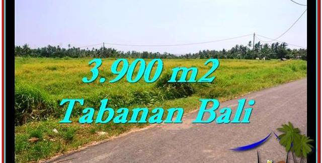Exotic LAND SALE IN Tabanan Selemadeg BALI TJTB258