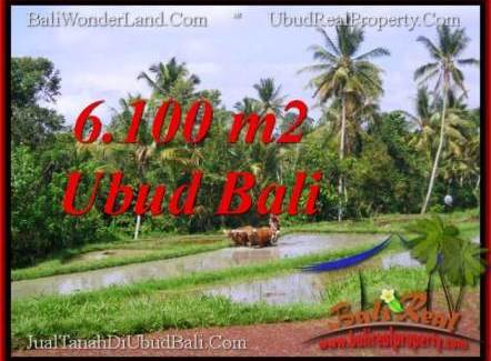 Beautiful LAND FOR SALE IN UBUD TJUB552