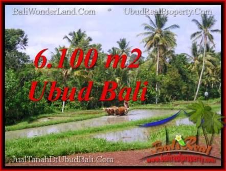 Beautiful LAND FOR SALE IN UBUD TJUB552