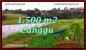 Magnificent LAND IN Canggu Batu Bolong BALI FOR SALE TJCG198