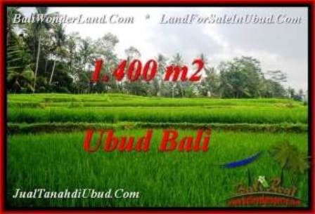 FOR SALE Affordable LAND IN Ubud Pejeng BALI TJUB539