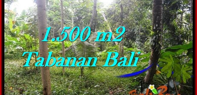 Magnificent PROPERTY TABANAN LAND FOR SALE TJTB279
