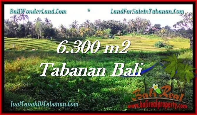 Affordable 6,300 m2 LAND FOR SALE IN TABANAN BALI TJTB275