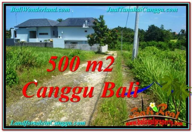 Magnificent PROPERTY LAND IN Canggu Brawa FOR SALE TJCG201