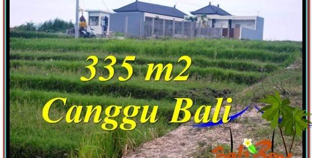 Exotic PROPERTY 335 m2 LAND SALE IN Canggu Umalas BALI TJCG204