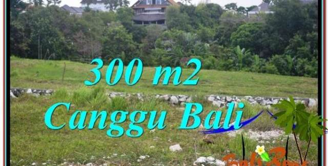 Affordable LAND IN CANGGU BALI FOR SALE TJCG205