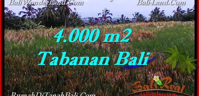 Magnificent LAND SALE IN Tabanan Selemadeg BALI TJTB288