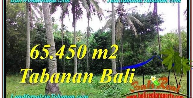 Exotic PROPERTY LAND FOR SALE IN TABANAN TJTB290