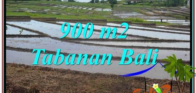 Exotic 900 m2 LAND IN TABANAN FOR SALE TJTB308