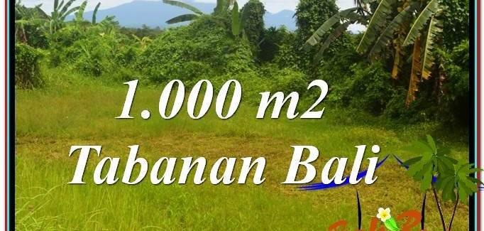 Exotic PROPERTY 1,000 m2 LAND SALE IN TABANAN TJTB311
