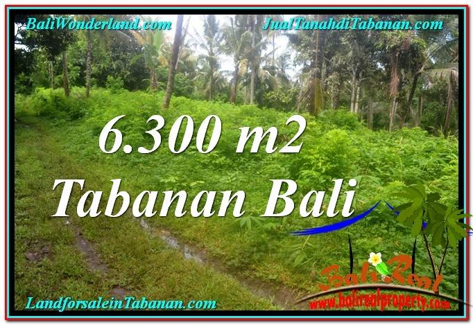 FOR SALE Magnificent PROPERTY 6,300 m2 LAND IN Tabanan Selemadeg TJTB313