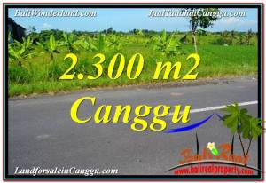 Affordable 2,300 m2 LAND IN CANGGU FOR SALE TJCG209