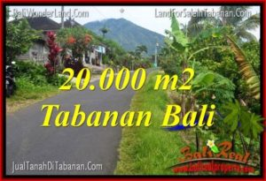 FOR SALE 20,000 m2 LAND IN TABANAN BALI TJTB315