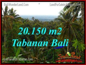 Exotic LAND FOR SALE IN Tabanan Penebel TJTB322
