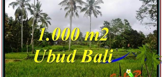 Affordable PROPERTY UBUD BALI 1,000 m2 LAND FOR SALE TJUB570