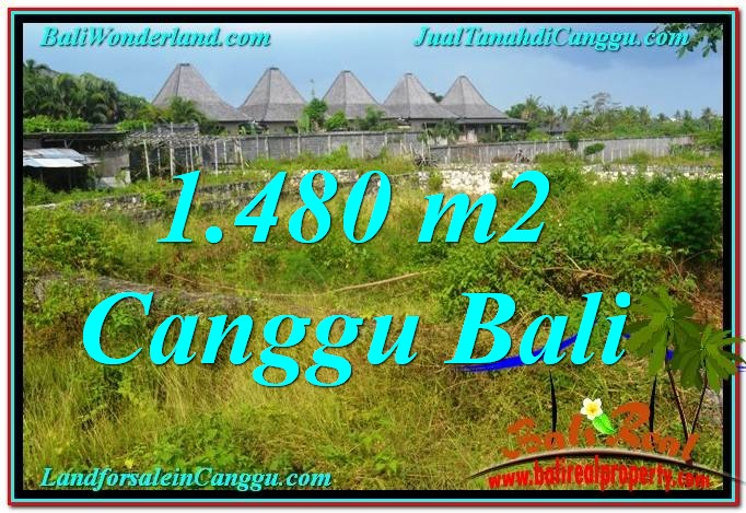 Exotic 1,480 m2 LAND SALE IN Canggu Pererenan TJCG212