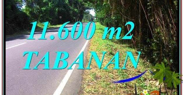 FOR SALE Affordable PROPERTY 11,600 m2 LAND IN Tabanan Selemadeg TJTB327