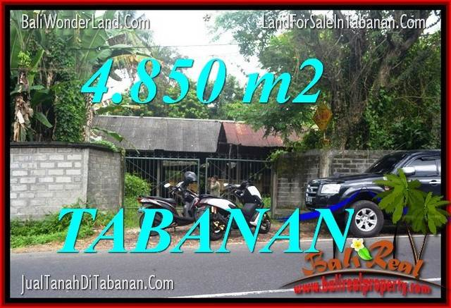 Magnificent PROPERTY TABANAN BALI LAND FOR SALE TJTB330