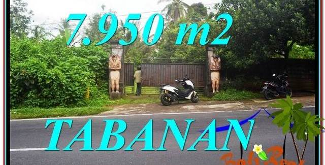 Exotic LAND IN Tabanan Bedugul FOR SALE TJTB331