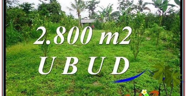 Magnificent PROPERTY 2,800 m2 LAND FOR SALE IN Ubud Tegalalang TJUB592