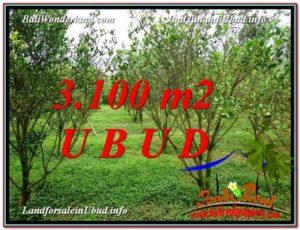 Affordable UBUD BALI 3,100 m2 LAND FOR SALE TJUB593