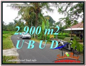 Magnificent PROPERTY LAND IN UBUD FOR SALE TJUB586