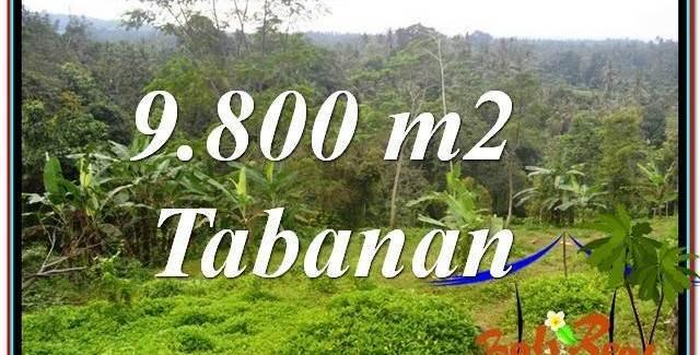 Affordable 9,800 m2 LAND FOR SALE IN Tabanan Selemadeg TJTB350